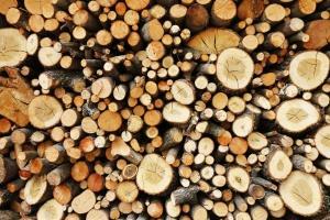 Le chauffage au bois est concurrencé par le fioul et le gaz