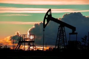 Image Cop 21 : les pays producteurs de pétrole prêts à changer ?